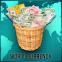 Coleção de moeda / conversor