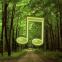 Os sons da floresta