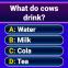 Show do Milionário 2020 - Jogo do Milhão Online
